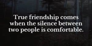 quote True friendship comes when the silence between two people is comfortable
